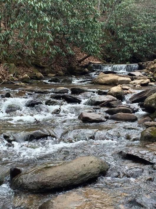 Amicalola Falls 2