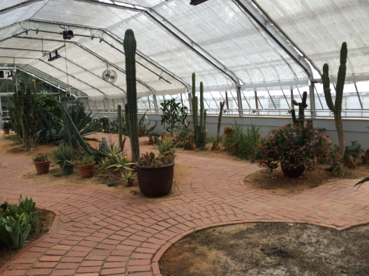birmingham-botanical-gardens-3