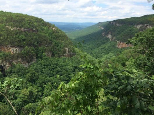 cloudland-canyon-2
