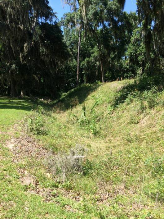 Fort Morris 2